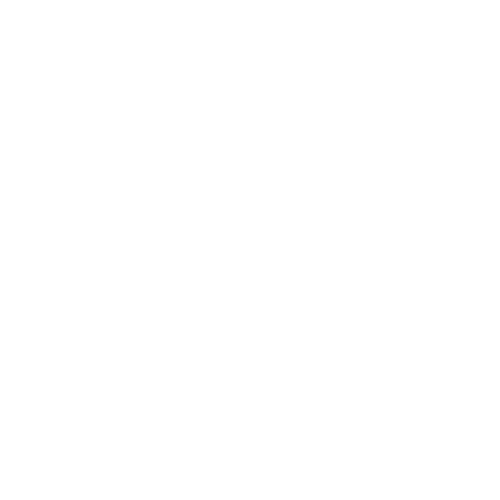 Sex Worker's Opera's logo